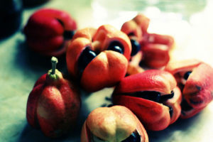 open ackee fruit with arilli