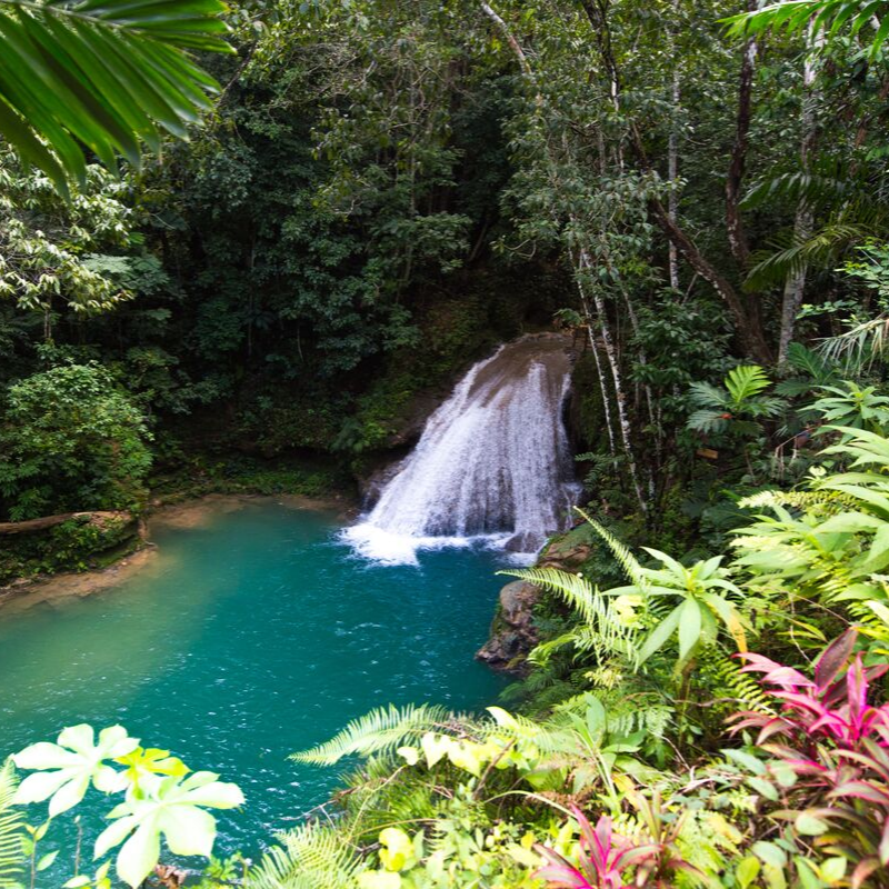 Waterfall in Jamaica with lush vegetation